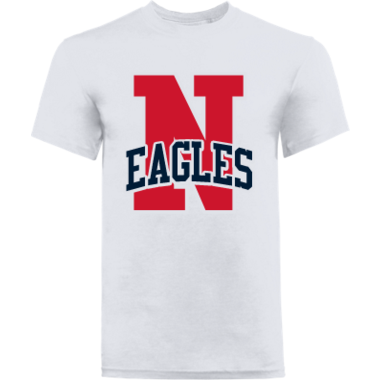 N Is For Eagles