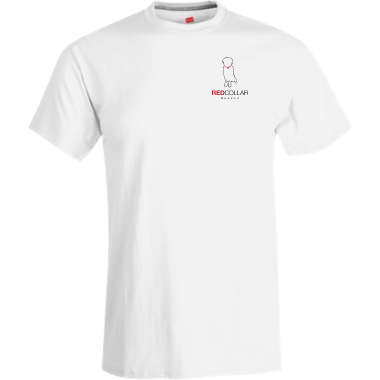 Cotton/Polyester Short Sleeve Tee W/Logo On Front & Back (Men/Youth)